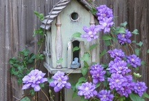 Along The Garden Path / by Dianne Koenig Mejia