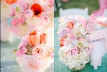 Ashley Gain Weddings / Wedding Inspiration for romantic, timeless and beautiful weddings.