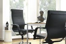 FS Management / The FS-Line was launched back in 1980. And its highly flexible, unitary seat- and backrest shell are still considered a global milestone in dynamic seating. With the elegant curve of the swivel arms, the appealingly spacious seat, slim contours and compact mechanics, the design also wrote history. A more attractive ergonomic office chair, so lacking in complexity, is difficult to imagine.
