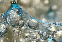 Art & Photography / From glorious God's creation to sublime human expression :) / by Tina Kloepfer