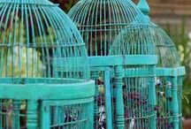 Decorated birdcages