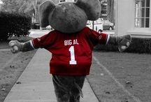 All things ROLL TIDE! / by Chantelle Moore