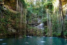 Mayan Adventure / Vacationing in the Riviera Maya / by Ellen Murray