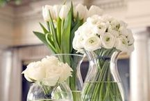 Wedding pomanders - bouquet - centerpieces / Flowers for a wedding