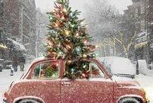 Christmas / by trina ballato