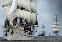 Sea Tales / The 7 Seas - the vassels - the pirates