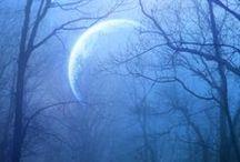 The Moon / by Mieko Wakita