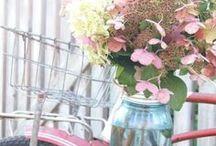 quiero tener un jardín..me gustan las flores / by Merci Doll