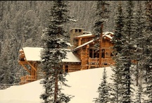 The Log Cabin: A Continuing Legacy
