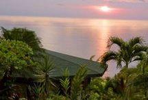 One Bedroom Beach Villas / Vacation in Costa Rica.  Beautiful ocean views, lots of jungle wildlife.  Tulemar has many one bedroom options that can sleep 1-5 people.