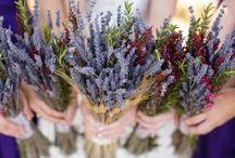 floral / by Elizabeth Christensen