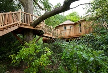 Treehouse/Cabin