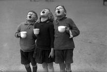 Café Café  / ...& Chocolate...& Tea...& Mate. / by Tania HSarabia
