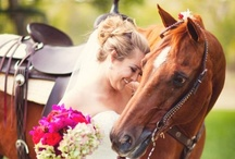 """I Can Hear the Bells! / I grew up on the ocean and love it, but the whole """"wedding on the beach"""" is too cliche for me... Bein a Southern girl, I want a simple rustic wedding with navy blue and sun flowers."""