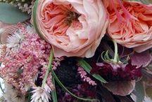 Flowers // Flores / Centros florales