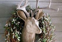 Deer // Ciervo / Siempre falso, nunca disecado.