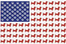 Doggies :) / by Jen Bower