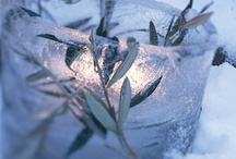 Winter - Christmas ☃