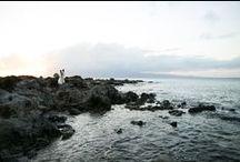 Maui Wedding Photos / Beautifully Capture wedding photos in various locations on Maui / by Joanna Tano