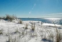 Coastal Paradise / by Deb Yarbrough