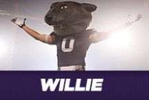 Willie the Wildcat / Dedicated to K-State's favorite mascot and the Pride of Wildcat Land / by K-State Athletics