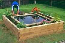 Garden:Raised Beds / Elevating your garden beds so that perhaps they are easier to manage.  For example for some one in a wheel chair, or someone who cannot get down on the ground and back up.  These raised beds make life so much more enjoyable.