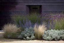 Exteriors | Garden