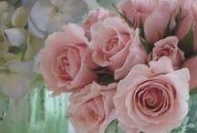 ≈ Roses  ≈⊱✿⊱≈ / Dans la vie j 'aime deux choses, toi et la rose, la rose pour un jour et toi pour toujours ...
