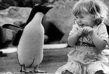 I Just Really Like Animals / by Kristen Slama