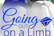 Going Out on a Limb - Sapphire Falls / My Kindle Worlds crossover novella between The Bride Wore Red Boots and Sapphire Falls