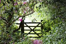#PinterestingGarden / Pinteresting Garden