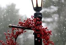 La veille de Noël