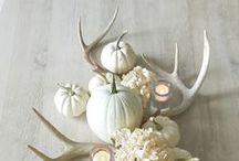 f a l l / fall decor   thanksgiving recipes   autumn interior