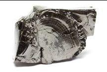 Venusrox Shungite / Our exclusive and rare collection of Elite Shungite plus Shungite Baring Rocks