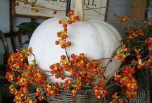 Festive : Fall Inspiration