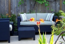 Outdoors / Patio / by Emily Harding