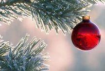 Festive : Winter Inspiration