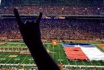 Texas Longhorns Fan Central / by Academy Sports + Outdoors