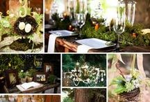 Mood board: Woodland night
