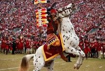 Florida State Seminoles Fan Central / by Academy Sports + Outdoors