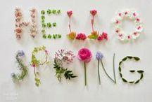 Springtime / Celebrating the season of Spring