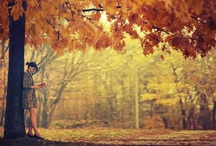 All things Autumn / by Kaitlin Lutz