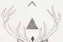 ▲ Oh Deer ▲ / The beautiful deer <3 / by ▲ Fawn And Rose ▲