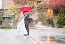 Long Island Weddings / Wedding Photography in Long Island New York by Ceci B Photography #weddingphotography #longislandweddingphotography #brides #wedding  / by Ceci B Photography