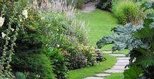Piha ja puutarha - Gardening
