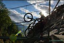 BIKE / Bike Quotes MTB Pictures Bike Bilder