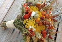 Fall Wedding & Shower / by Monica Almasy
