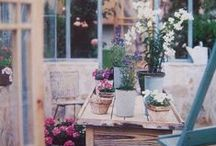 Gardens, Plants and flowers inspiration