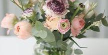floralitäten  // blumen / Fast nichts hebt meine Laune so sehr wie ein schöner Blumenstrauß. Je nach Jahreszeit zaubern Blumen unterschiedliche Atmosphären und Stimmungen. Im Januar haben weiße Tulpen bei mir Saison bis sie im Frühling von Ranunkeln und Pfingstrosen abgelöst werden. Im Sommer mag ich Hortensien und im Herbst Astern und Dahlien. Im Winter pausieren die Blumen und Floraliäten. Dann zieht Eukalyptus bei mir ein!