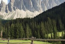 südtirol // south tyrol / Südtirol mit seinen mächtigen Bergen, den vielen kleinen Tälern, Meran und Bozen gehört zu meinen Lieblingsurlaubsländern. Im Sommer bin ich oft im Meraner Land zum Wandern, im Winter zum Skifahren am Kronplatz. Hier pinne ich die schönsten Plätze, das leckerste Essen und Inspirationen für einen unvergesslichen Urlaub in Südtirol.